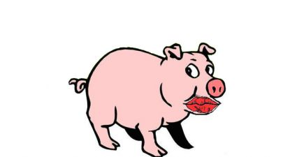 Why I disagree with the #piggate story
