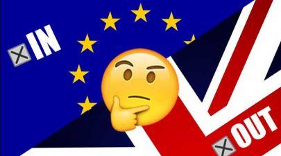 referendum feature